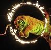 Цирки в Ессентуках